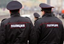 Общественный порядок в новогодние праздники в Подмосковье будут охранять 18000 полицейских