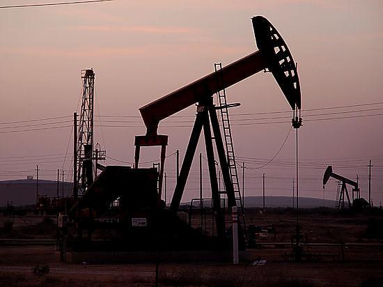 Биржевые спекулянты готовятся обвалить цены на нефть до $15 долларов