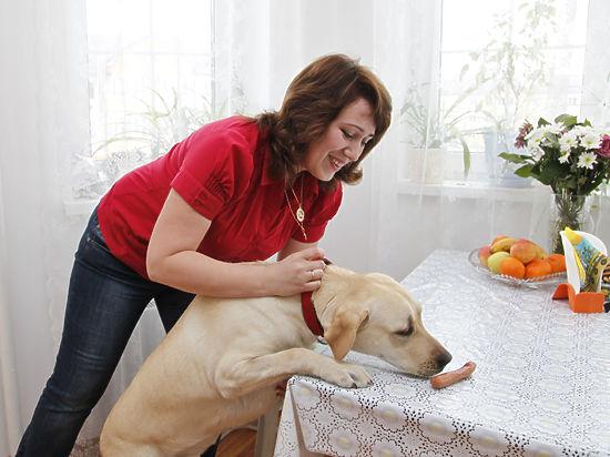 Как правильно держать дома крупных собак