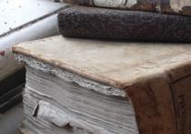 В числе ярких «штрихов» уходящего года – тех, что «со знаком «минус», – принятое решение о том, что в связи с сокращением штата сотрудников МВД многие крупные российские объекты культуры – музеи, библиотеки, архивы, – должны лишиться полицейской охраны