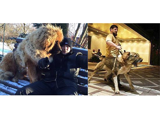 Кадыров и враги народа: кто спустил собак на Рамзана