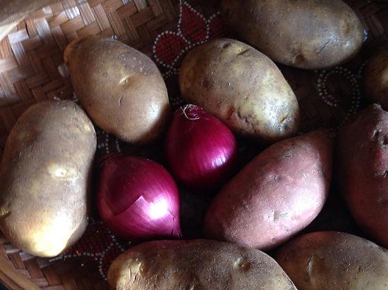 Российские ученые признали ГМО безвредными