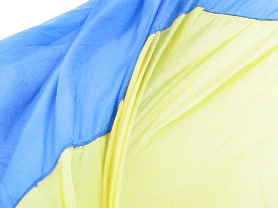 Европейские политики с пророссиийской позицией попали в немилость Киева