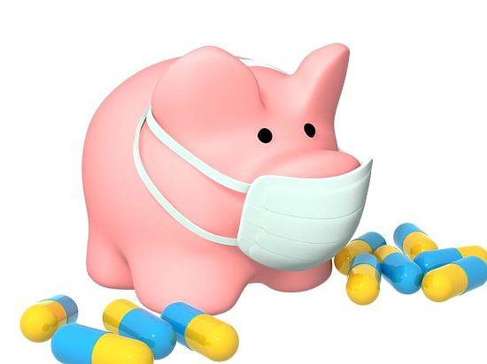 Смертельный вирус. В Черноземье пришел свиной грипп