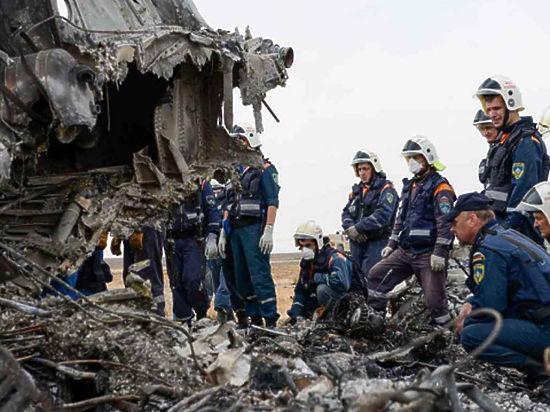 Следователи оградили родных жертв взрыва A321 от информации о террористе