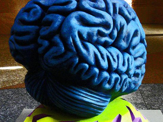 Нейрофизиологи назвали человеческое сознание управляемым хаосом между сумасшествием и сном