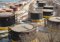 Встреча России с представителями ОПЕК, которая будет посвящена вопросу, как спасти нефтяные цены, может пройти уже до конца февраля