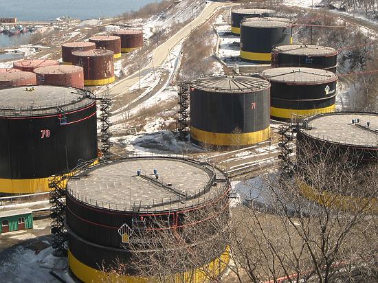 Завяжется ли «нефтяной роман» России и ОПЕК