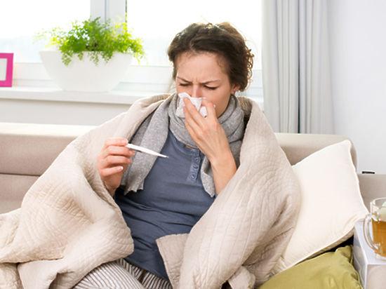 Свиной грипп: от гайморита и пневмонии до смертельных случаев