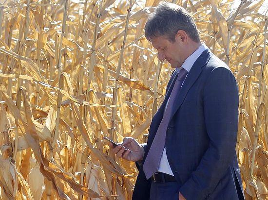 Ткачев: Через четыре года мы будем есть только свои помидоры