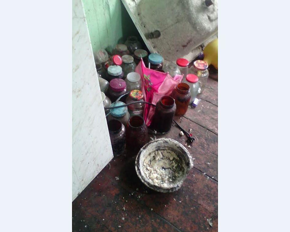 Замерзавшую на Алтае девочку-инвалида спасла от смерти собака