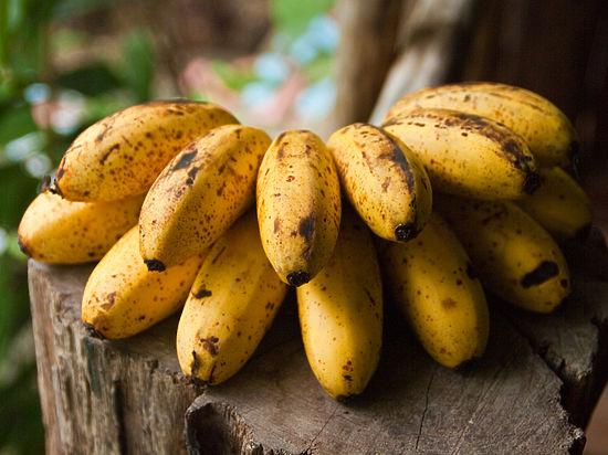 Здоровью россиян угрожают бананы в крапинку