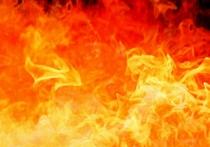 Неожиданный результат дало двухгодичное расследование пожара в автомобиле, в котором заживо сгорела супружеская пара