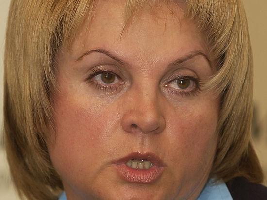 Элла Памфилова займется выборами: проблемы избирателей застряли в «серой зоне»