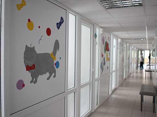 Телефонный произвол в детской больнице Ставрополя