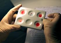 Почему Мария Шарапова попалась на препарате, эффективность которого остается под вопросом