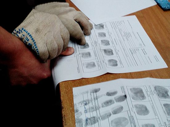 Смоленские эксперты-криминалисты о том, как раскрываются преступления