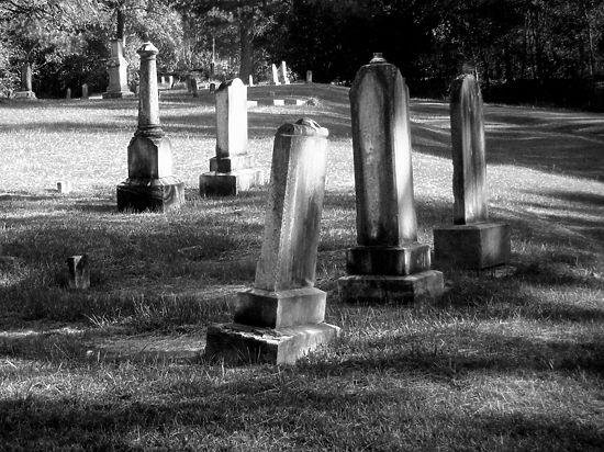 В Клинском районе почетным гражданам решено больше выделять кладбищенской земли