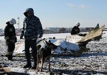 Основной версией крушения Boeing 737-800 компании FlyDubai в Ростове-на-Дону остается ошибка пилотирования при посадке в сложных метеоусловиях