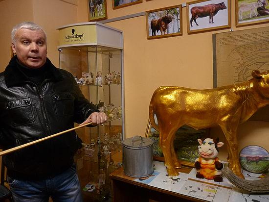 Корова как шанс города Горбатова