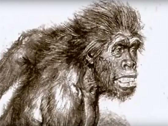 Неандертальцев погубили инфекции, занесенные кроманьонцами