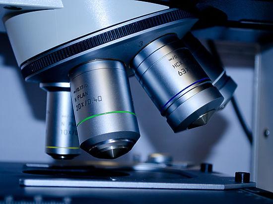 Биологи нашли ген старости