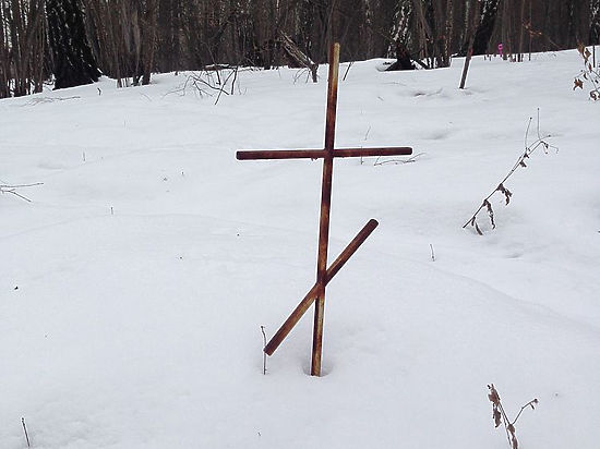 В соседнем Пушкинском районе от кладбища собак также открестились
