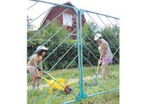 В майские праздники дачники сходили на собрания своих садово-огородных товариществ и убедились, что там все по-прежнему