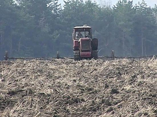 Конфликт фермеров с инвесторами в Курской области продолжается