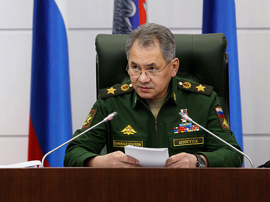 Шойгу: Россия возобновляет бомбежки боевиков в Сирии