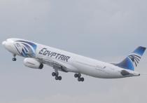 Авиаэксперты оценили данные о неполадках египетского A320 перед катастрофой