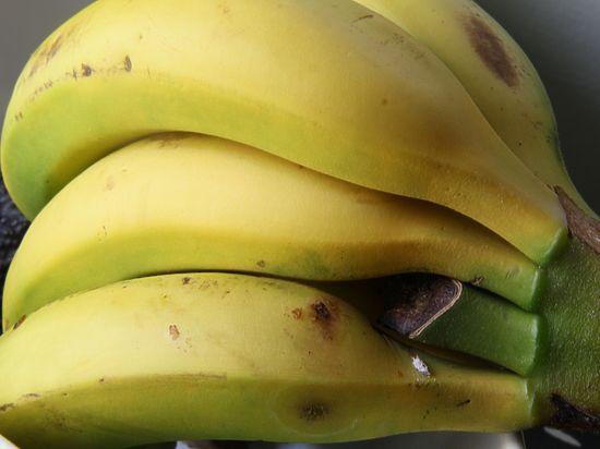 Россельхознадзор собрался запретить еду из Африки и поставки через Белоруссию