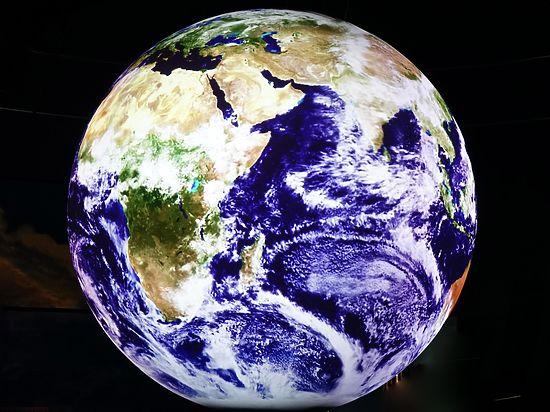 На нашей Земле насчитали триллион биологических видов