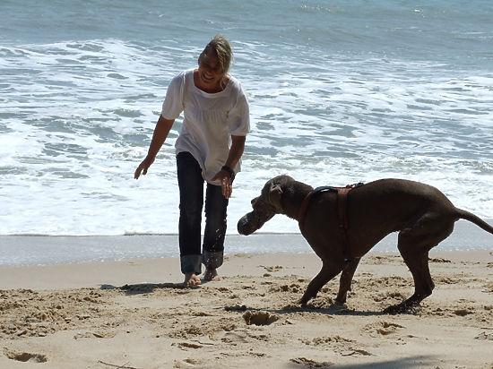 На море вместе с собакой
