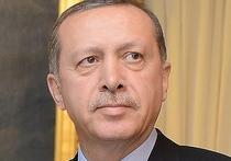 Эксперты оценили извинения Эрдогана за сбитый российский самолет