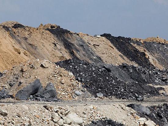Какое новосибирское предприятие загнало крестьян в уголь?