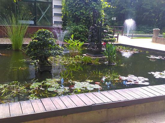 Вор пришел на ночную рыбалку в Ботанический сад