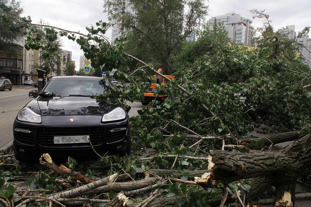Последствия страшной грозы в Москве: ураган повалил более 1000 деревьев