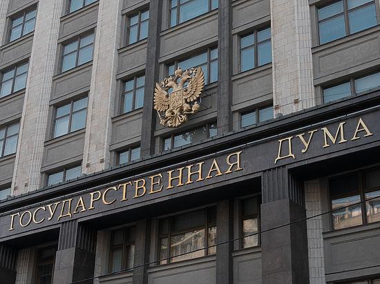 Госдуму попросили наказывать граждан за недоносительство