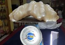 Рыбак, проживающий на филиппинском острове Палаван, в течение десяти лет хранил у себя под кроватью крупнейшую в мире 34-килограммовую жемчужину, не слишком подозревая о ее истинной ценности