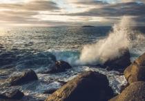 В течение XXI века уровень мирового океана может вырасти на 3,5 метра, тем самым оказав существенное влияние на приморские города