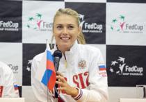 СМИ: дисквалификация Шараповой будет сокращена на год