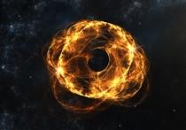 Израильский физик Джефф Штайнхауэр создал небольшой по размеру «аналог» черной дыры, способный затягивать в себя звук