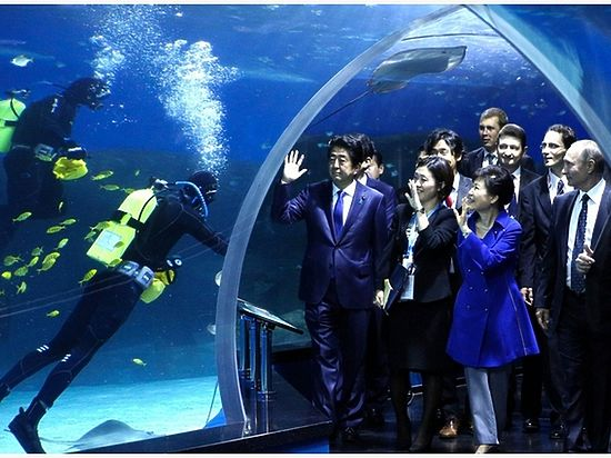 Путин показал главам Японии и Кореи Приморский океанариум