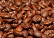 Группа ученых, представляющих Институт климата в Сиднее, пришли к выводу, что изменение климата может привести к исчезновению с лица Земли дикого кофе, а затем и кофейных плантаций