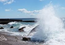 За полвека 40 процентов Черного моря оказались непригодны для жизни, выяснила международная группа ученых из  Бельгии, Германии, Италии и США