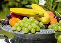 Группа специалистов из Канады, представляющих Альбертский университет, выяснила, что потреблять достаточное количество фруктов будущим матерям значительно важнее, чем предполагалось ранее