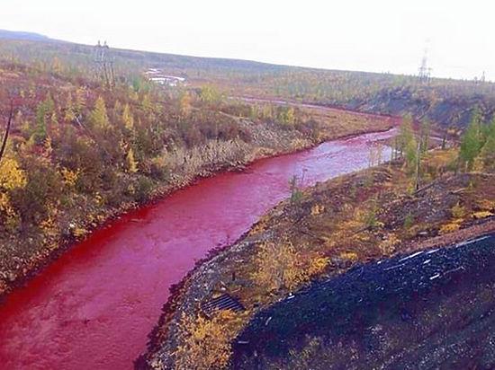 Минприроды разбирается в причинах экологической катастрофы в Красноярском крае