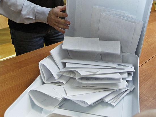 «Народный избирком»: альтернативная система подсчета голосов «проверит» Памфилову
