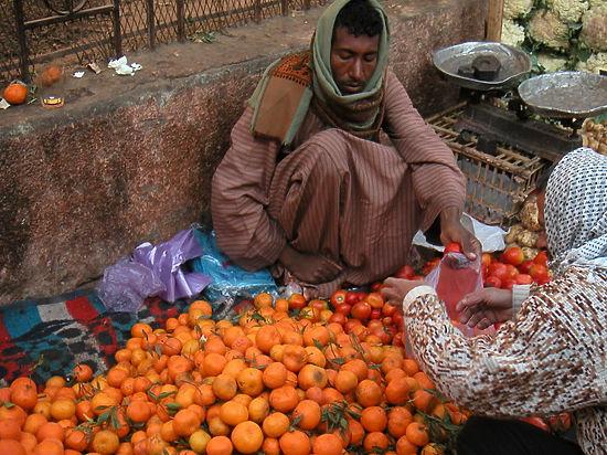 Россия пригрозила отомстить Египту запретом на импорт апельсинов